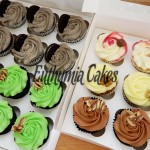 chocolate mint oreo vanilla carrot an chocolate cupcakes maltesers