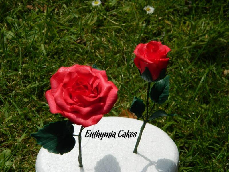 Cake toppers Gum paste English Red Rose