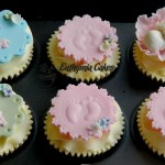 baby shower christening, pink blue green girl flower chocolate vanilla cupcakes newborn