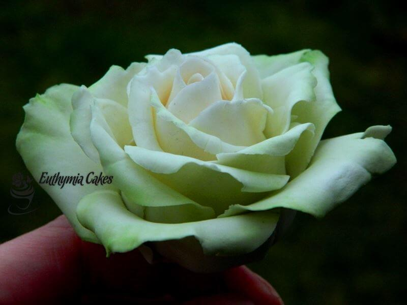 Cake toppers Gum paste green rose