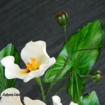Cake toppers Gum paste Katniss plant (Montevidensis)