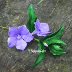 Cake toppers sugar gum paste periwinkle Vinca minor