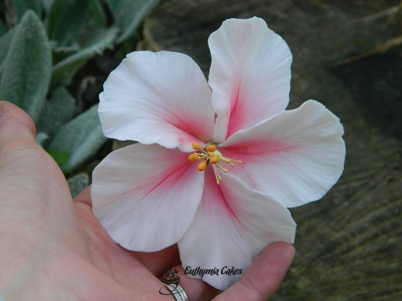 Cake toppers Sugar gum paste stunning pink hibiscus for cakes wedding cake 40th birthday decorations edible flowers